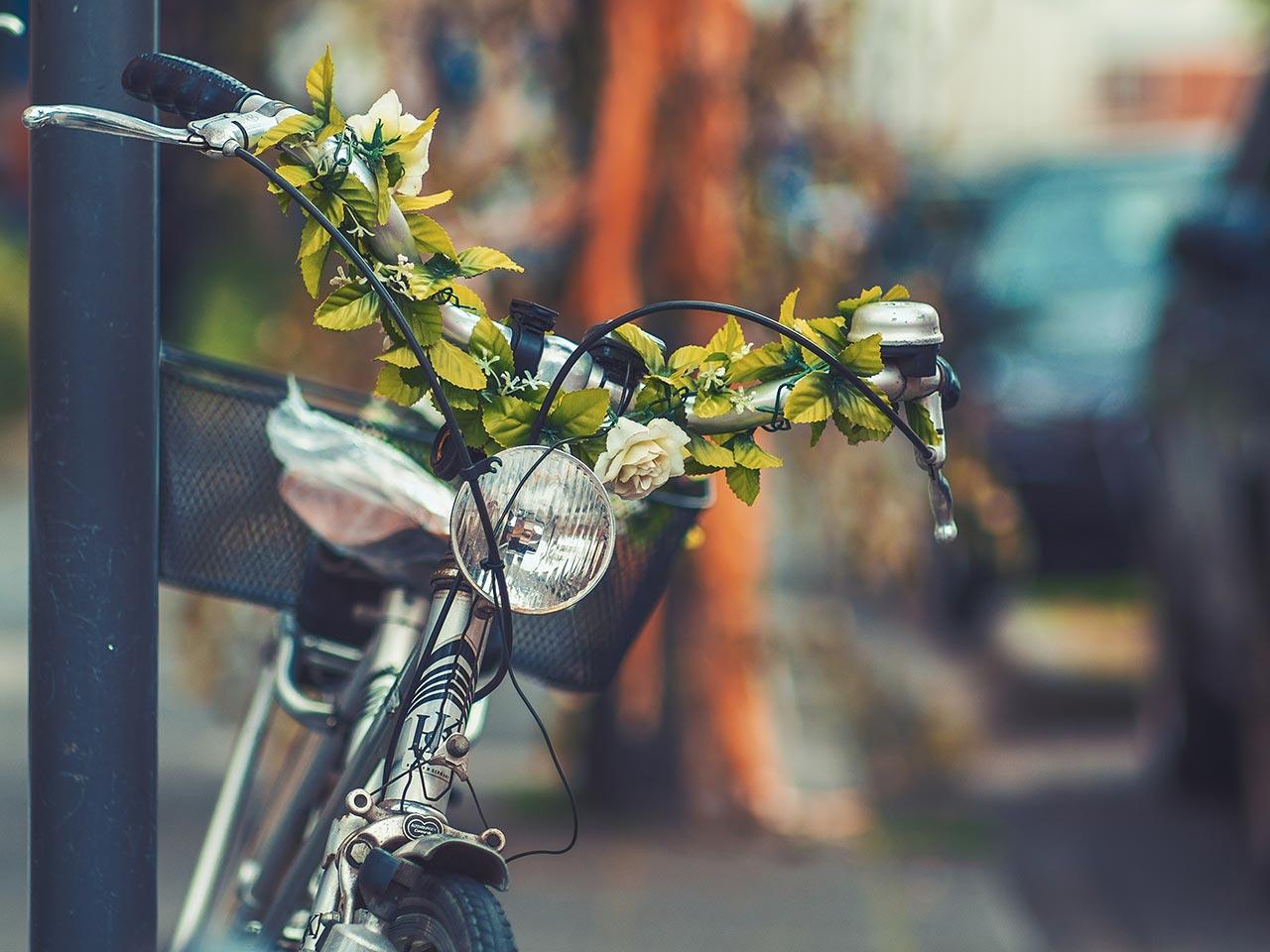 Fahrradtour zur Müritz Sail